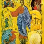 Sermon: The Thirteenth Sunday after Pentecost, September 8, 2019